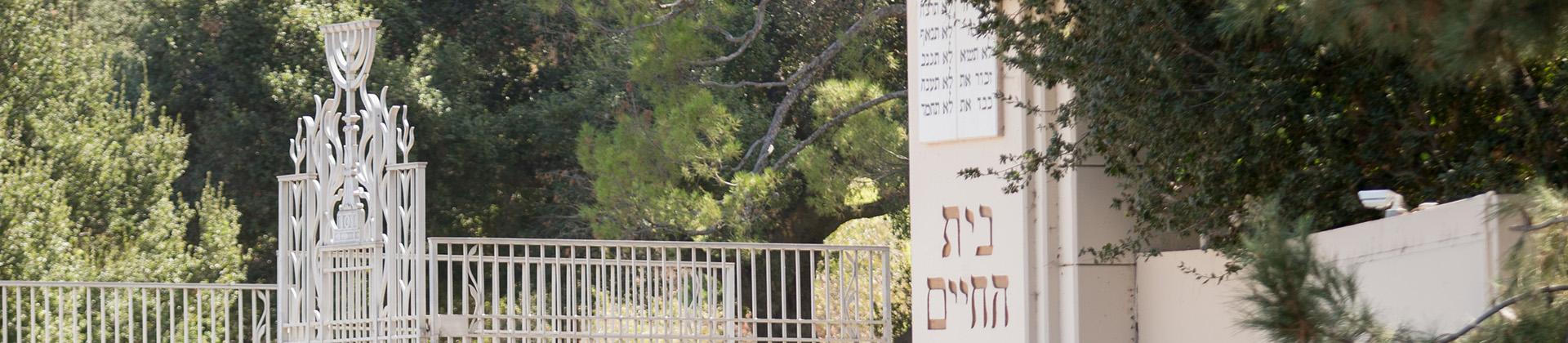 Header photo of Mount Sinai entrance gates