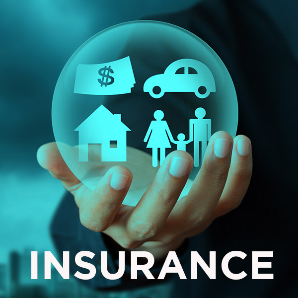 Icon for Insurance shows a hand holding a globe with family and financial symbols.